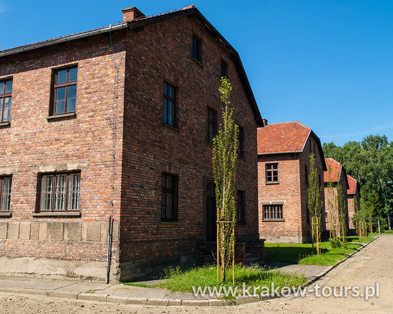2. Auschwitz Birkenau Museum Regular Tour by Bus on 19th of August