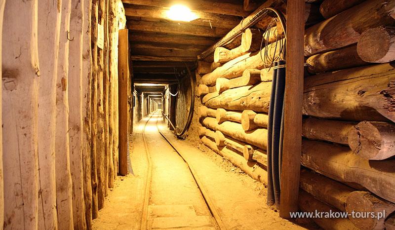 P3. Salt Mine Wieliczka Private Tour